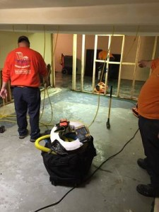 Water Damage Restoration Technicians Cleaning Carpet After A Flood