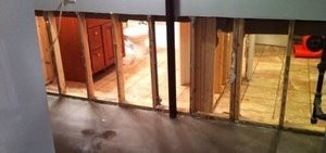 Wall Restoration From Mold Damage